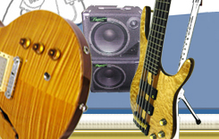 Custom electric guitars and custom electric bass guitars